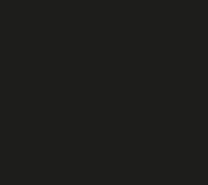 Pairot